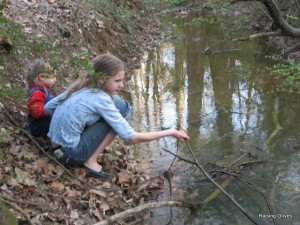Amber stick creek
