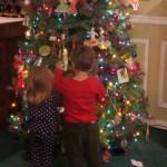 nicholas bella christmas tree