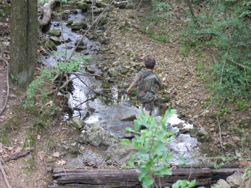 backyard creek nick