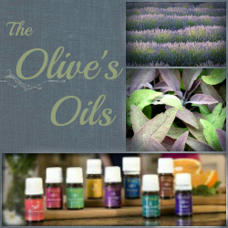Olive's OIls