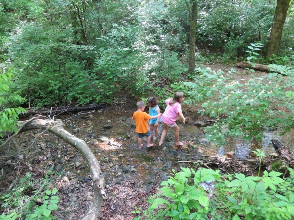 Savannah Nick Safe families creek